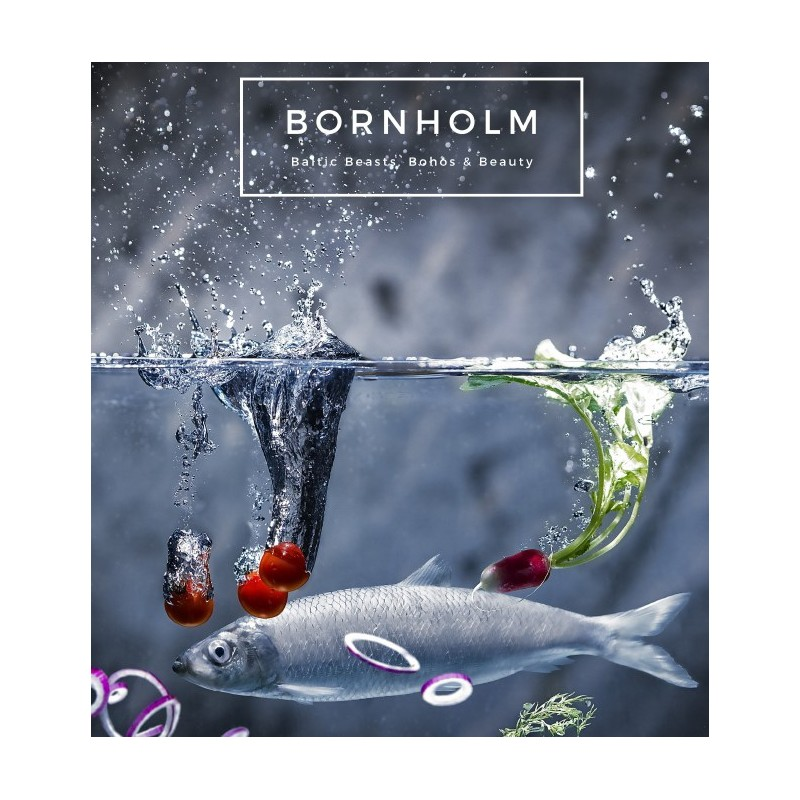 bornholm-baltic-beast-bohos-beauty